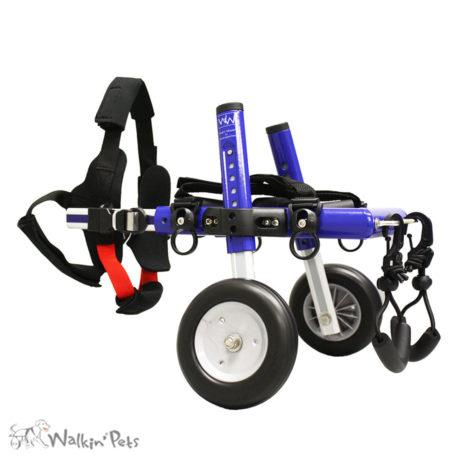Small Dog Wheelchair 2