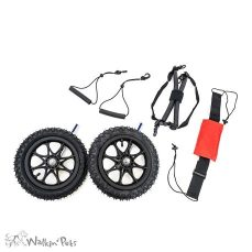 Pneumatic Wheelkit 1