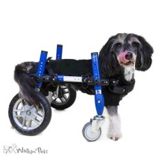 Small Full Support Wheelchair