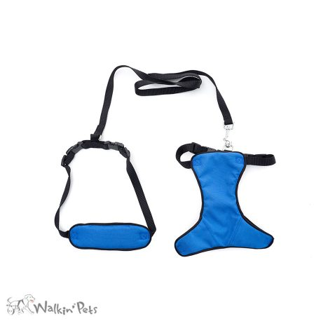 Total Body Harness 2