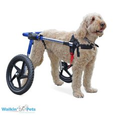 Walkin' Wheels MedLarge Dog Wheelchair