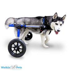 Walkin' Wheels MEDIUM Dog Wheelchair