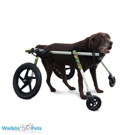 Large Fully Supportive Dog Wheelchair