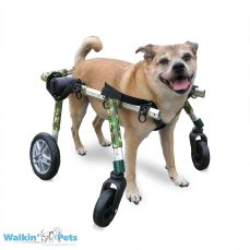 Medium Fully Supportive Dog Wheelchair