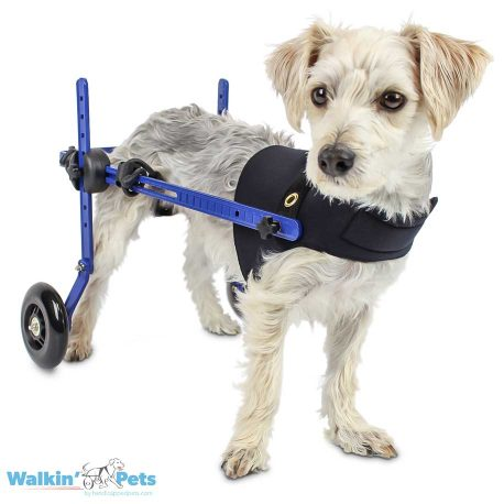 Mini Front Vest Piper Wheelchair